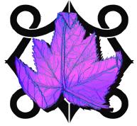 leafcolourbackground